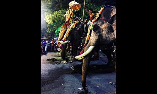 Pranav Pradeep BBA (AO) Sem 2